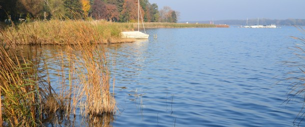 Der Goldene Herbst am Schwielochsee